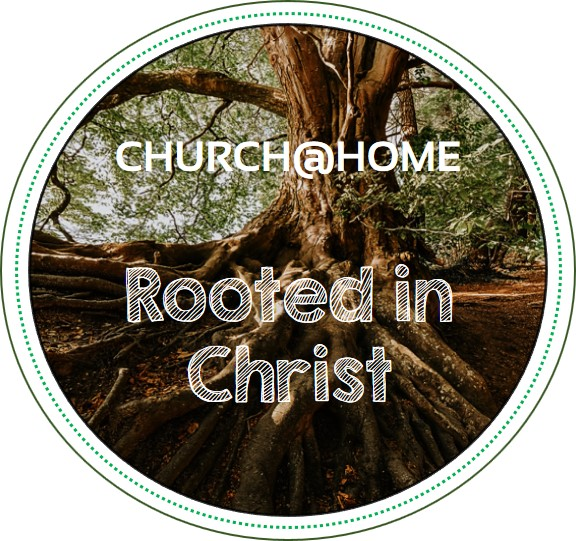 Rooted in Christ circle